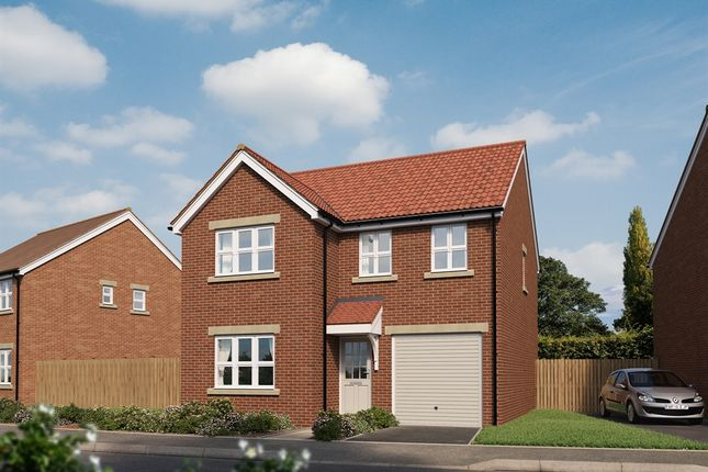 "Thumbnail Detached house for sale in ""The Downing "" at Forge Wood, Crawley"