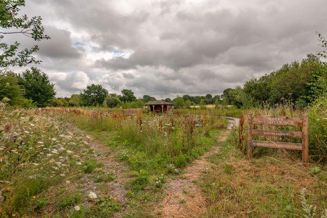 Adjacent Wildlife/Pond Walk