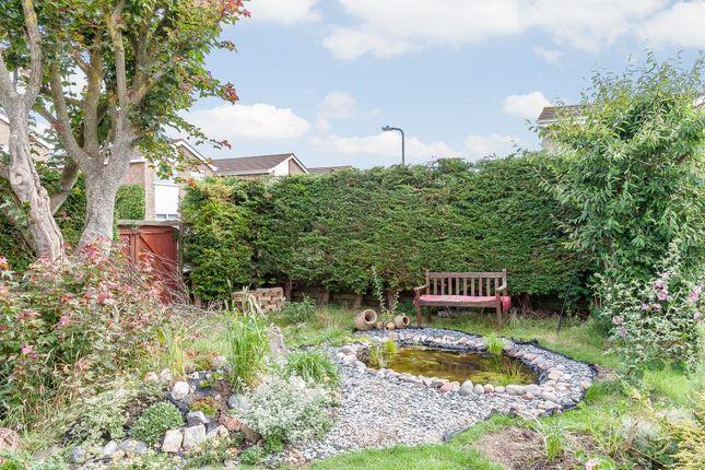 Thumbnail Detached house for sale in Coleridge Gardens, Burnham-On-Sea