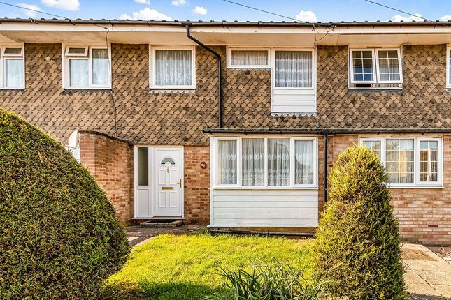 Thumbnail Semi-detached house to rent in Ivy Crescent, Bognor Regis