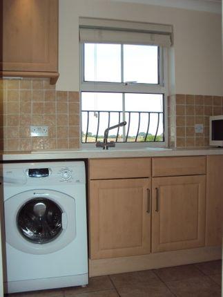 Kitchen of Sandmartin Crescent, Colchester CO3