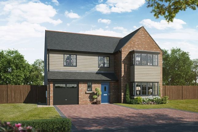 Thumbnail Detached house for sale in Hepscott Park, Morperth