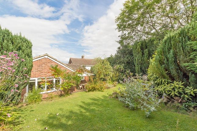 Thumbnail Detached bungalow for sale in Keycol Hill, Bobbing, Sittingbourne