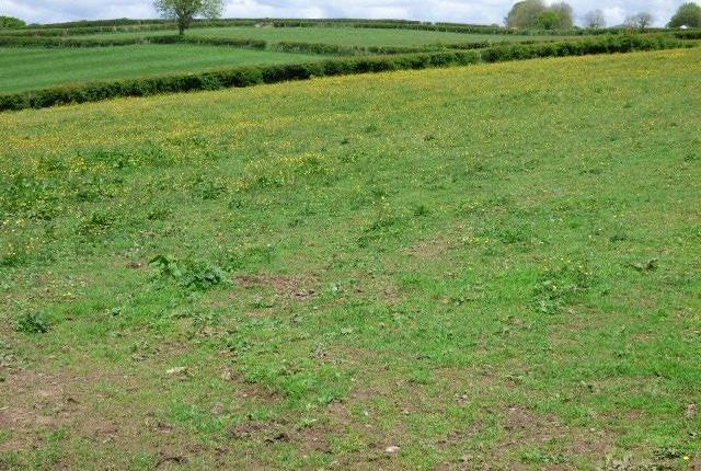 The Land of Llangain, Carmarthen SA33