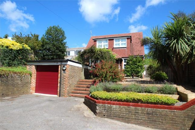 Thumbnail Detached house for sale in School Hill, Findon Village, Worthing