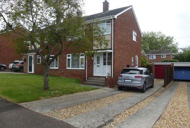Thumbnail Property to rent in Avon Close, Taunton