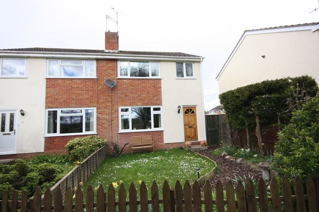 Thumbnail Semi-detached house to rent in Roughoor Close, Taunton