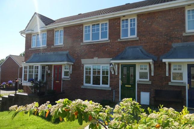 Thumbnail Terraced house to rent in 12 Plas Y Mynach, Cardiff