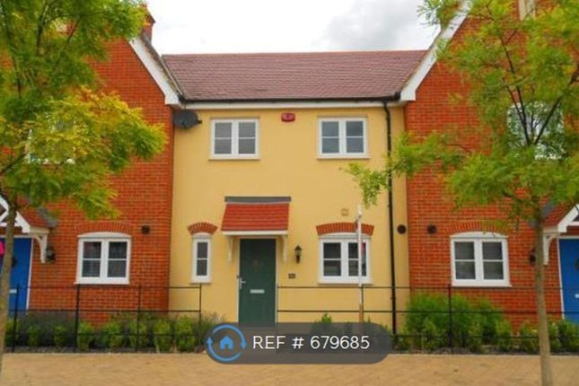 Thumbnail Terraced house to rent in Brooklands Avenue, Bedford