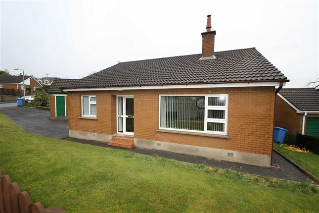 Thumbnail Detached bungalow to rent in The Drumlins, Ballynahinch