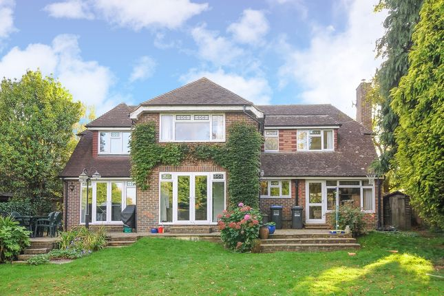 Thumbnail Detached house to rent in Lucas Way, Haywards Heath