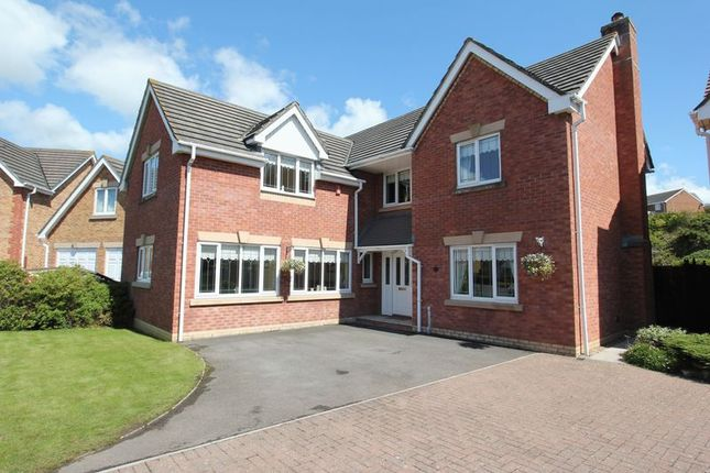 Thumbnail Detached house for sale in Cilgant Y Meillion, Rhoose, Barry