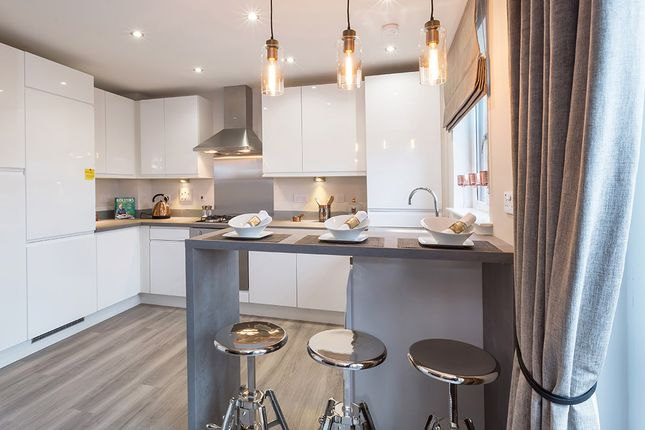 "3 bedroom terraced house for sale in ""Argyll"" at Countesswells Park Place, Aberdeen"