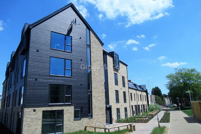 Studio to rent in Drovers Place, Huntingdon PE29