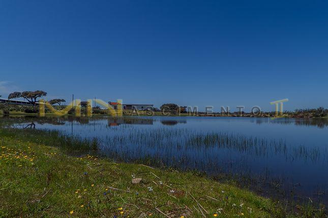 Farm for sale in Close To Almodôvar, Portugal