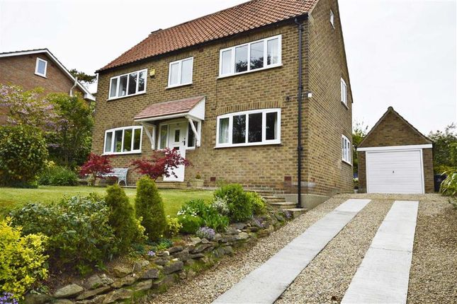 Thumbnail Detached house for sale in South Avenue, Scalby, Scarborough