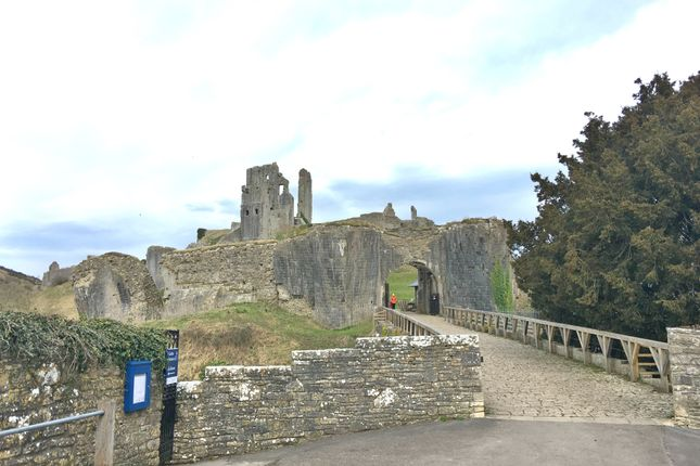 Thumbnail Detached house for sale in East Street, Corfe Castle
