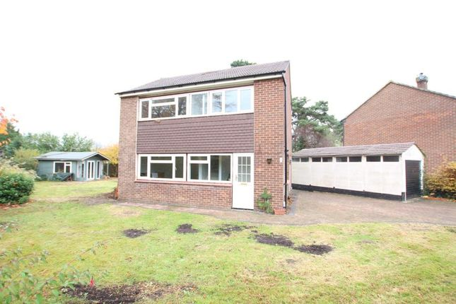Thumbnail Detached house to rent in Wilcot Close, Bisley, Woking