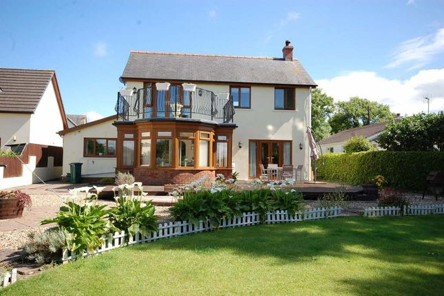 Thumbnail Detached house to rent in Cold Inn, Kilgetty