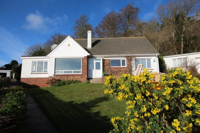 Thumbnail Detached house to rent in Scoresby Close, Torquay