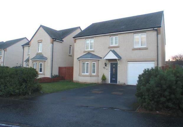 Thumbnail Detached house to rent in Suthren Yett, Prestonpans, East Lothian