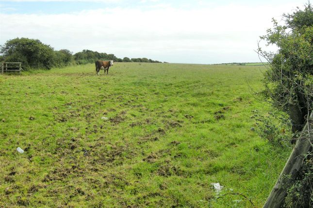 Thumbnail Land for sale in Little Hilton Farm, Simpson Cross, Haverfordwest