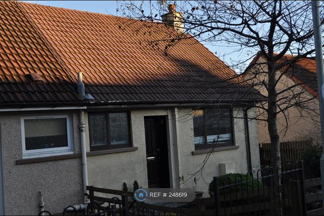 Thumbnail Semi-detached house to rent in Peden Avenue, Dalry