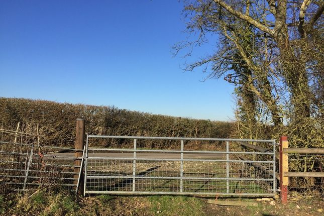 Land to rent in Lew, Bampton