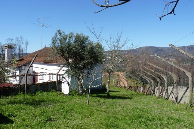 Castanheira De Pera, Central Portugal, Portugal