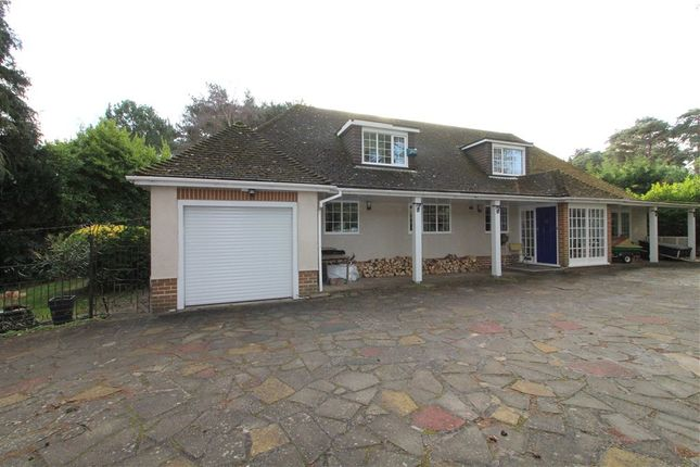 Thumbnail Bungalow for sale in Lilliput, Poole, Dorset