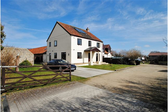 Thumbnail Detached house for sale in Red Road, Burnham-On-Sea