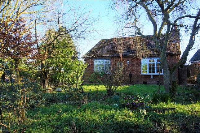 Thumbnail Detached bungalow for sale in Low Road, Norwich
