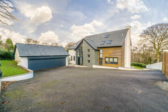 Thumbnail Detached house for sale in Plymbridge Road, Glenholt, Plymouth