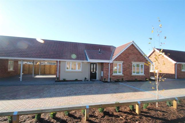 Thumbnail Bungalow for sale in Old Kirton Road, Trimley St. Martin, Felixstowe