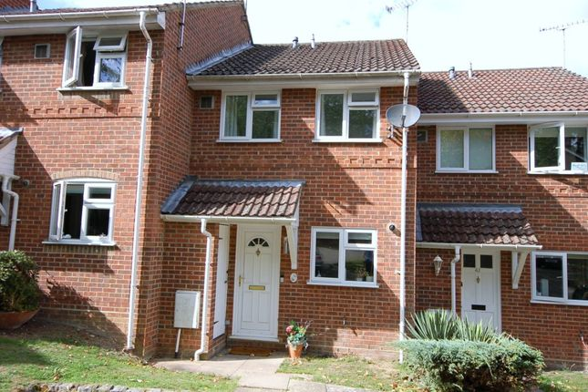 Thumbnail Terraced house for sale in Albert Road, Bagshot