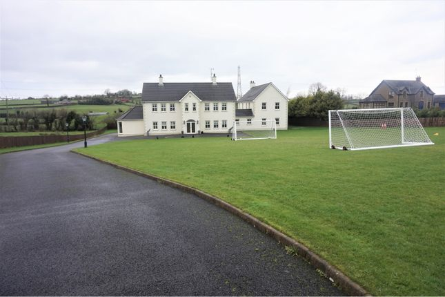 Front View of Ballysallagh Road, Dromore BT25