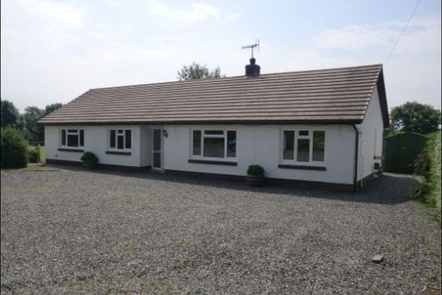 Thumbnail Bungalow to rent in Drefach, Lampeter