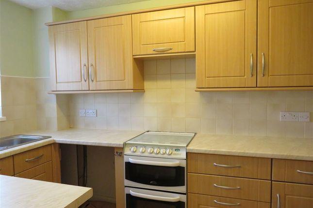 Thumbnail Property to rent in Prospect Walk, Lower Burraton, Saltash