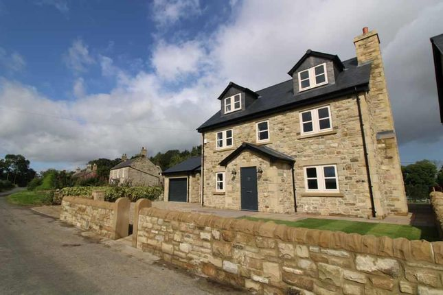 Thumbnail Detached house to rent in Milbourne, Newcastle Upon Tyne, Northumberland