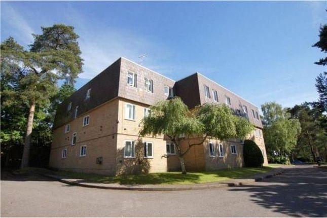 Thumbnail Flat to rent in Woodlands Court, Owlsmoor, Sandhurst