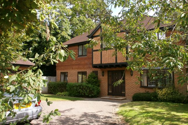 Thumbnail Detached house to rent in Weylands Park, Ellesmere Road, Weybridge