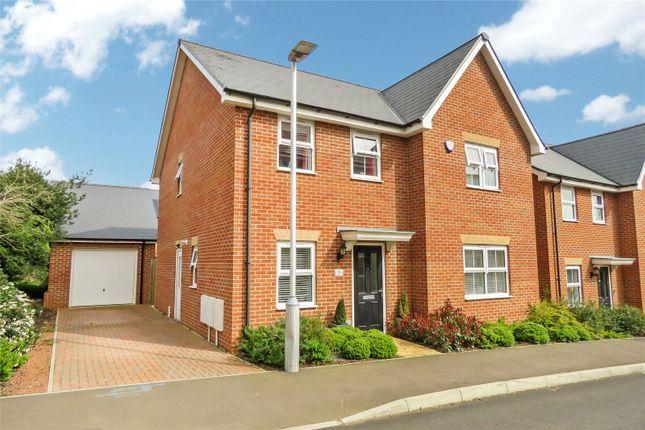 Thumbnail Detached house for sale in Hutchinson Rise, Potton, Sandy