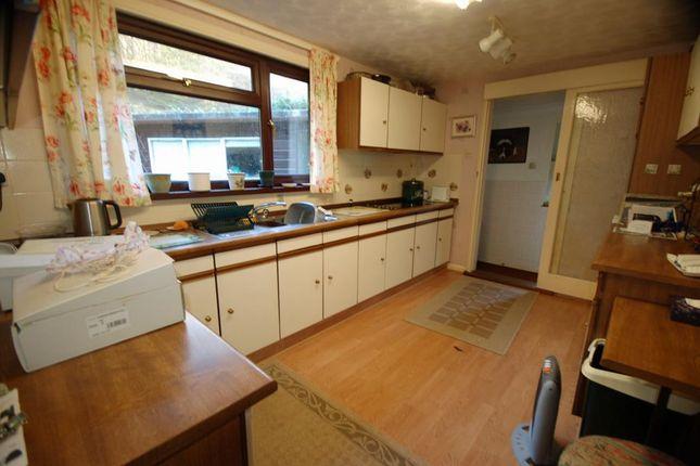 Kitchen of Cwmrheidol, Aberystwyth SY23