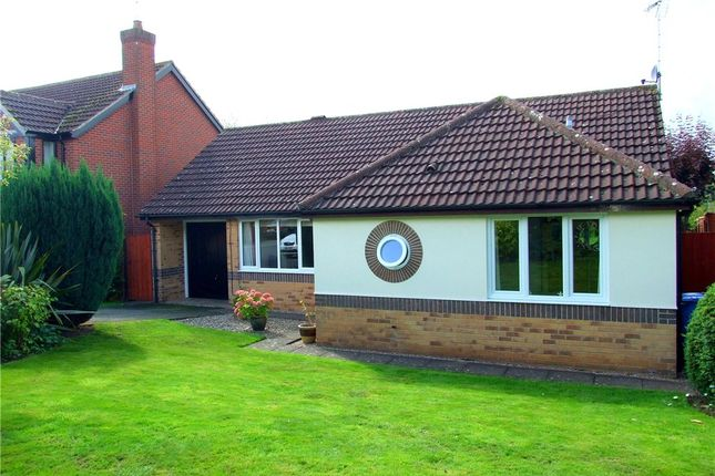 Thumbnail Detached bungalow for sale in Bellingham Court, Allestree, Derby