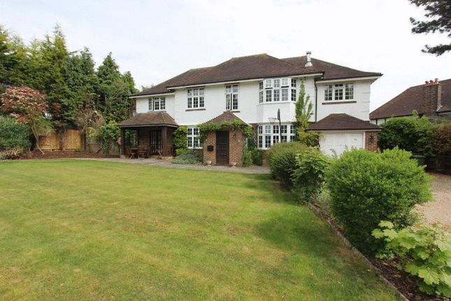 Thumbnail Detached house for sale in Pine Walk, Carshalton