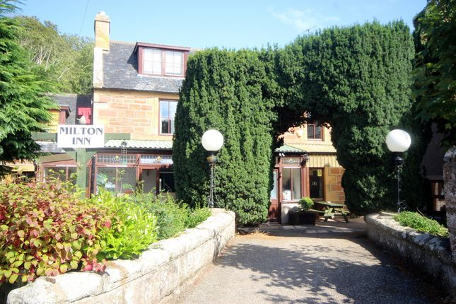 Thumbnail Leisure/hospitality for sale in Investment Sale - Milton Inn, Kildary, Ross-Shire