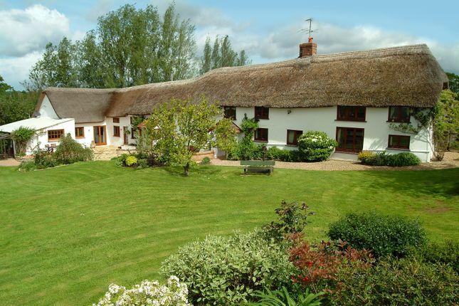 Thumbnail Detached house to rent in Old Bridge Farm, Plymtree, Devon
