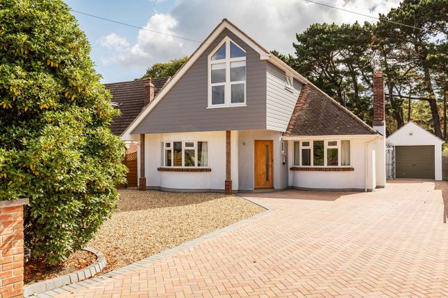 Thumbnail Detached house to rent in Talbot Woods, Bournemouth, Dorset