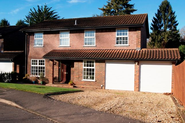 Thumbnail Detached house for sale in Southern Haye, Hartley Wintney, Hook
