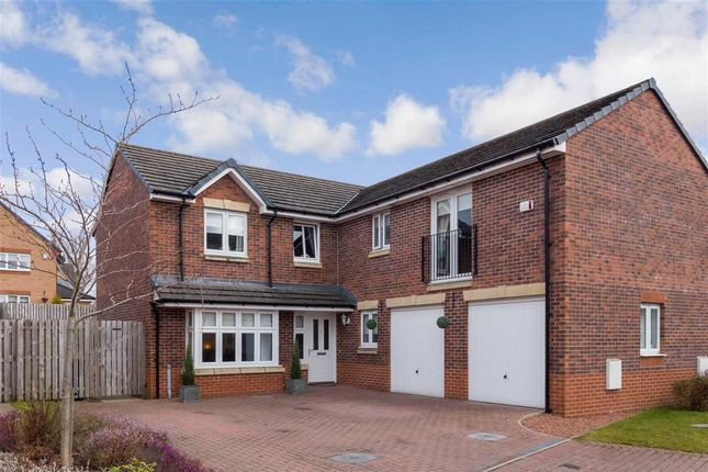 Thumbnail Detached house for sale in Wentworth Gardens, Jackton, Jackton